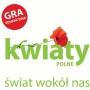 Kwiaty Polne - Świat Wokół Nas