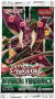 Yu-Gi-Oh! - Invasion: Vengeance booster