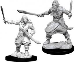 Dungeons & Dragons: Nolzur's Marvelous Miniatures - Bandits