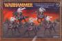 Dark Elves Doomfire Warlocks / Dark Riders