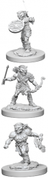 Dungeons & Dragons: Nolzur's Marvelous Miniatures - Goblins
