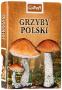 Karty: Grzyby Polski