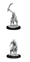 Dungeons & Dragons: Nolzur's Marvelous Miniatures - Jackalwere