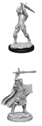Dungeons & Dragons: Nolzur's Marvelous Miniatures - Male Human Paladin