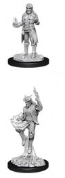 Dungeons & Dragons: Nolzur's Marvelous Miniatures - Male Tiefling Sorcerer