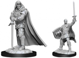 Dungeons & Dragons: Nolzur's Marvelous Miniatures - Human Paladin Male