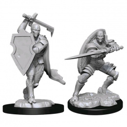Dungeons & Dragons: Nolzur's Marvelous Miniatures - Male Warforged Fighter