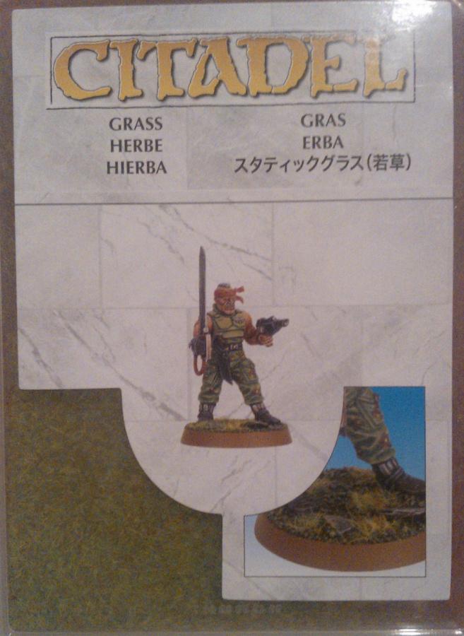 Citadel Grass 2013