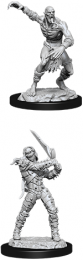 Dungeons & Dragons: Nolzur's Marvelous Miniatures - Wight & Ghast