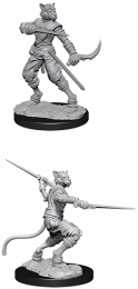 Dungeons & Dragons: Nolzur's Marvelous Miniatures - Tabaxi Male Rogue