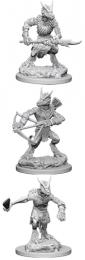 Dungeons & Dragons: Nolzur's Marvelous Miniatures - Kobolds