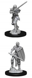 Dungeons & Dragons: Nolzur's Marvelous Miniatures - Human Fighter
