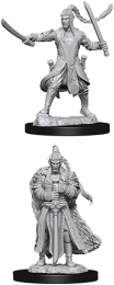 Dungeons & Dragons: Nolzur's Marvelous Miniatures - Male Elf Paladin